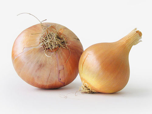 onion juice for hair loss reviews