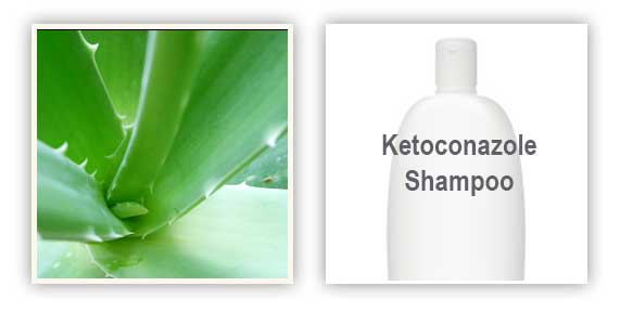 Success Story: Aloe vera and Ketoconazole 2% shampoo