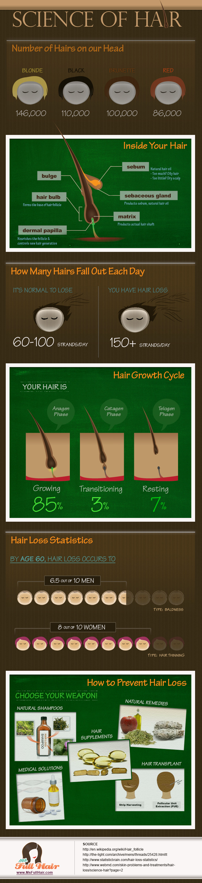 infographic science of hair care
