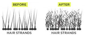 Before and After Using Hair Building Fibers