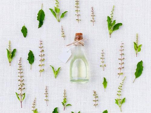 botanical hair growth ingredients