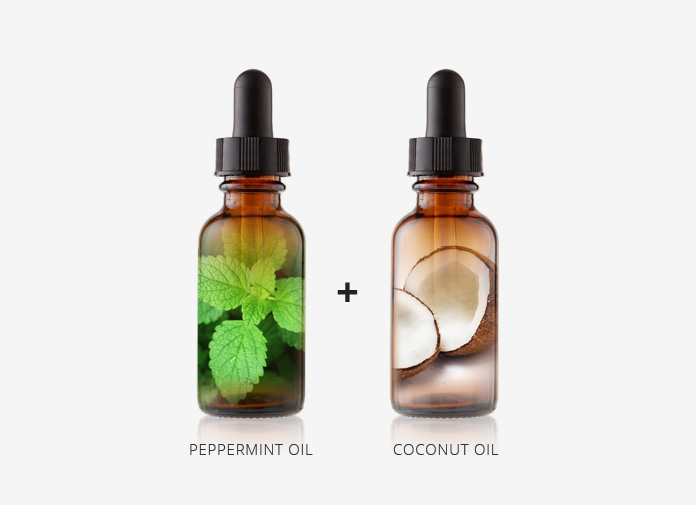 Peppermint Oil and Coconut Oil Mix for Hair Growth