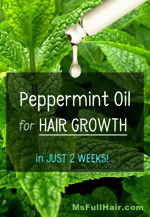 how to use peppermint oil for hair growth recipes