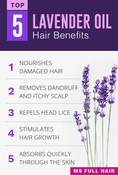 Lavender oil for hair growth benefits for hair and scalp