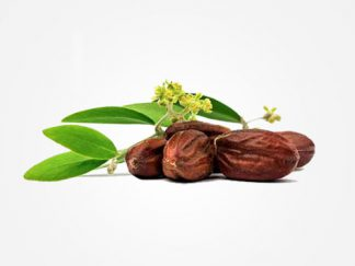 How to Use Jojoba Oil for Hair Growth – The ULTIMATE Guide