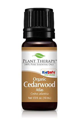 plant therapy organic cedarwood essential oil for hair
