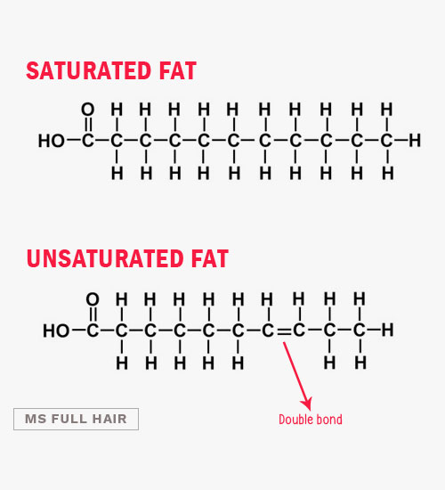 saturated fat vs unsaturated fat structure