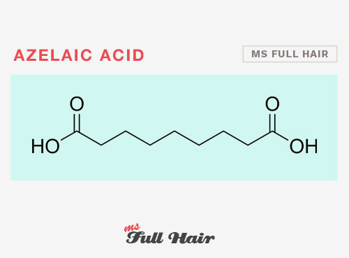 azelaic acid for hair loss alopecia
