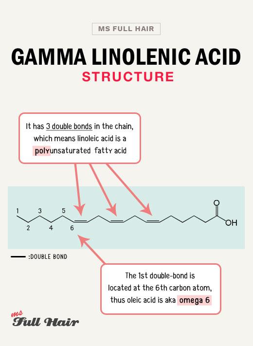 gla gamma linolenic acid structure