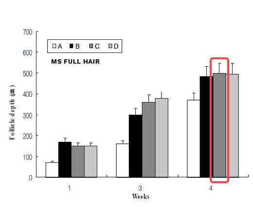 pine needle extract hair follicle depth